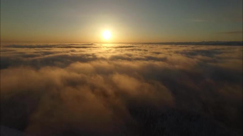 Туман над лесами Cибири Copter38