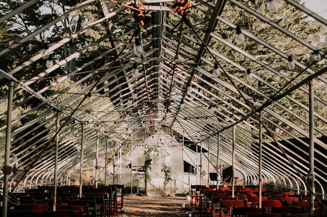 FrtwikOUsn0 - Свадьба в заповедном лесу на берегу океана (26 фото)