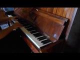 Sia - The Greatest на пианино