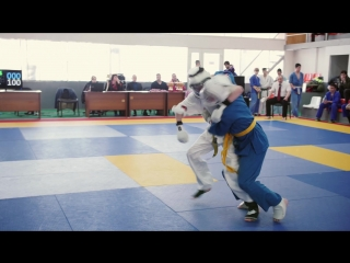 соревнования по кудо 2017