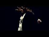 Би-2 feat. Чичерина - Падает снег (2010)