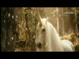 Белый конь   Юлия Валеева