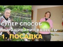 СУПЕР КАПУСТА на спанбонде ПОСАДКА Growing Cabbage on Spunbond 1