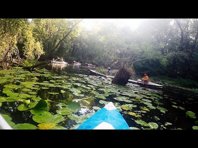 ПОХОД НА БАЙДАРКАХ VLOG протока Домаха, красотище, гребем, едим водный орех, active rest, kayaking