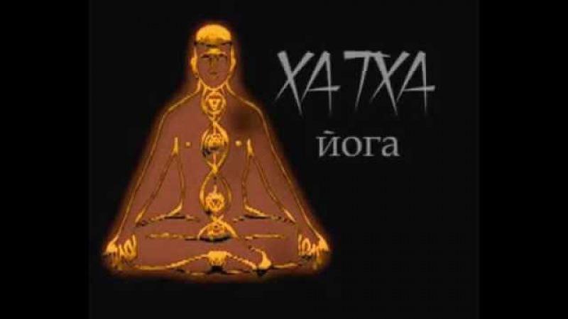 Хатха йога начальный уровень с Яной Демух 2005