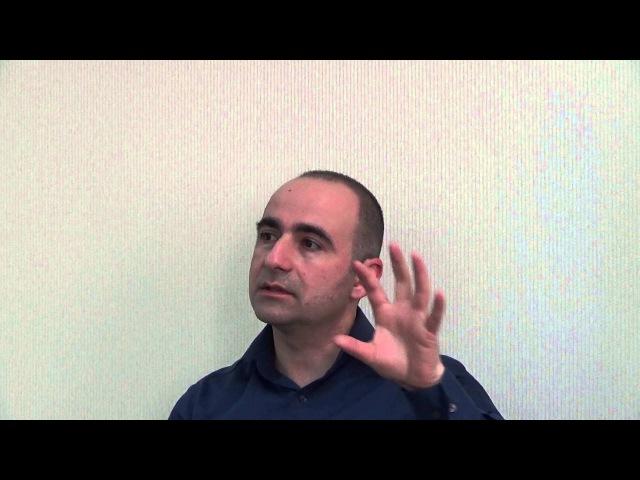 Денис Бугулов Солярная структура организации Интерактивная лекция