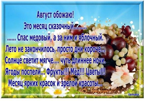 https://pp.vk.me/c636921/v636921030/2136d/W5ZLoOtKYeM.jpg