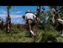 Остров сокровищ  Treasure Island (1990)