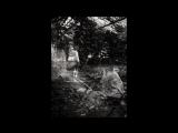 Svetlana Irevlina Photography -