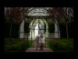 Love Story - Михаил и Оксана