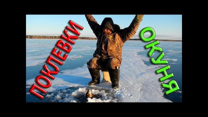 Зимняя рыбалка ПОКЛЕВКИ ОКУНЯ КОНУС КРЮЧОК БИСЕР