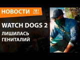 Watch Dogs 2 лишилась гениталий. Новости