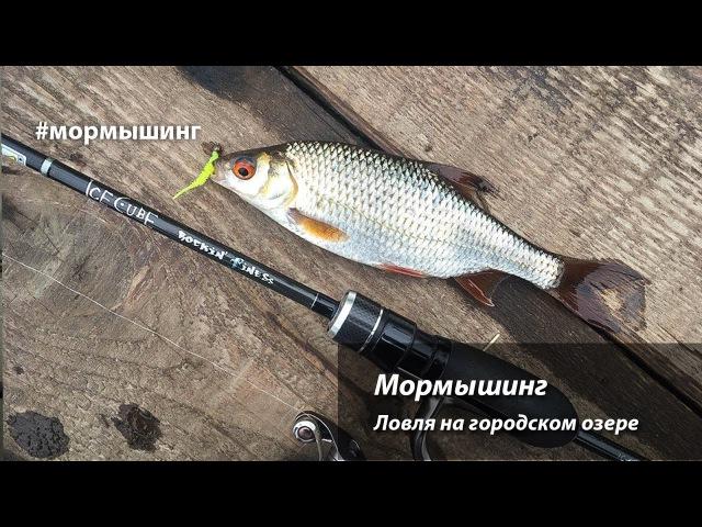 Мормышинг Ловля на мормышку спиннингом на городском озере