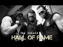WWE The Shield /Hall of Fame/
