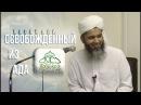 Хасан Али Освобожден из Ада по Божьему Милосердию