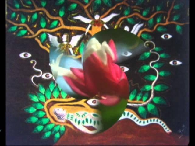 Icaros Ayahuasca Santa Ana. Rachel Willay . Francisco Montes Shuna