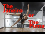 Pole Dance обучалка Janeiro aka Puma для Даши Загоржельской