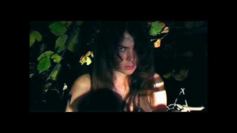 Night and Howling (PirogSV ft Вольная стая)