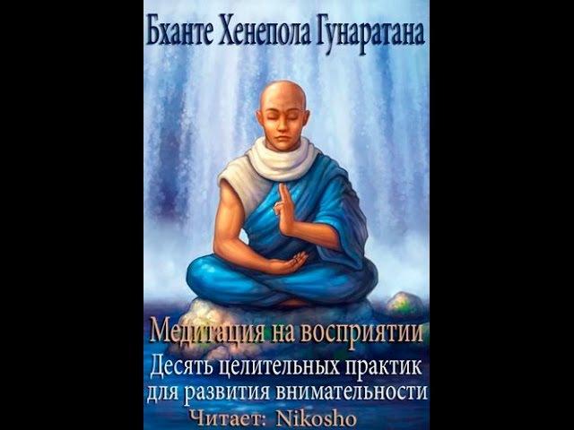 Медитация На Восприятие! Хенепола Гунаратана (Часть 1)