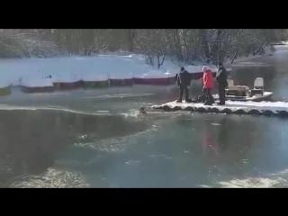 Житель Симферополя спас провалившуюся под лёд собаку (6 sec)