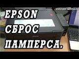 Сброс памперса и уровня чернил на МФУ и принтерах Epson.