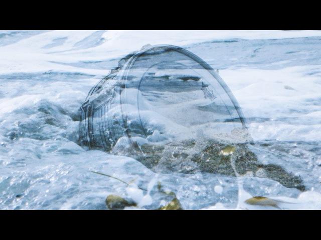Sleepy Sun - Seaquest (Official Music Video)