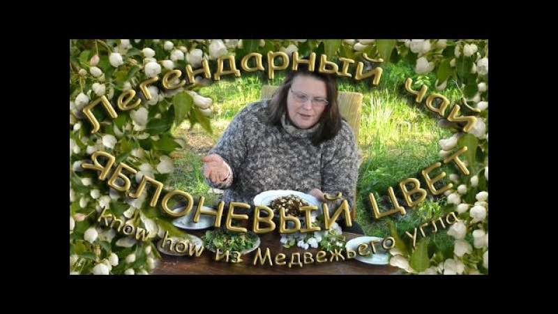 Легендарный чай ЯБЛОНЕВЫЙ ЦВЕТ know how из Медвежьего угла смотреть онлайн без регистрации