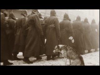 Белая гвардия на голову разбита, а красную армию никто не разобьет (Собачье серд ...
