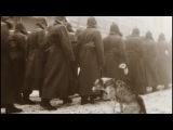 Белая гвардия на голову разбита, а красную армию никто не разобьет Собачье серд ...