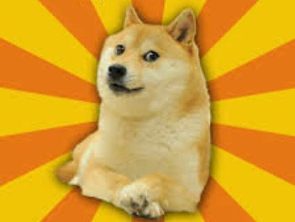 У меня потерялся белый значок с этой собакой. Если кто-нибудь видел ил