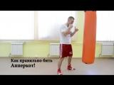 Как правильно бить Апперкот! Мастер класс по боксу от чемпиона мира Андрея Сироткина. Удары снизу