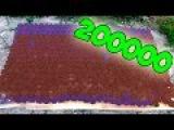 ПОДЖОГ 200000 СПИЧЕК. ЭКСПЕРИМЕНТЫ СО СПИЧКАМИ #лайфхаки со спичками# эксперименты #ГОРЯЩАЯ СПИЧКА#