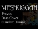 Meshuggah Pravus bass cover e veryday play 137