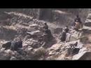 Хуситы обстреливают противника в провинции Ибб.