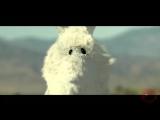 Nifra & Artisan - Rampage (Music video))) - YouTube