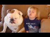 Это видео докажет вам- дети и собаки созданы друг для друга!