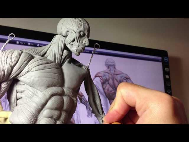 How to Sculpt Ecorche Hercules - Part 60 Left Coracobrachialis , Bicep Brachii