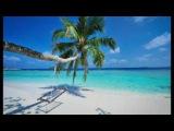 SinodA   Ex Machina туры в гоа beach resort the high 3 followme indian songs