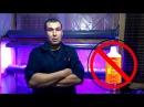Как подготовить керамзит для домашней гидропоники