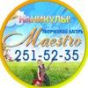 """Первый творческий лагерь """"Маэстро"""""""