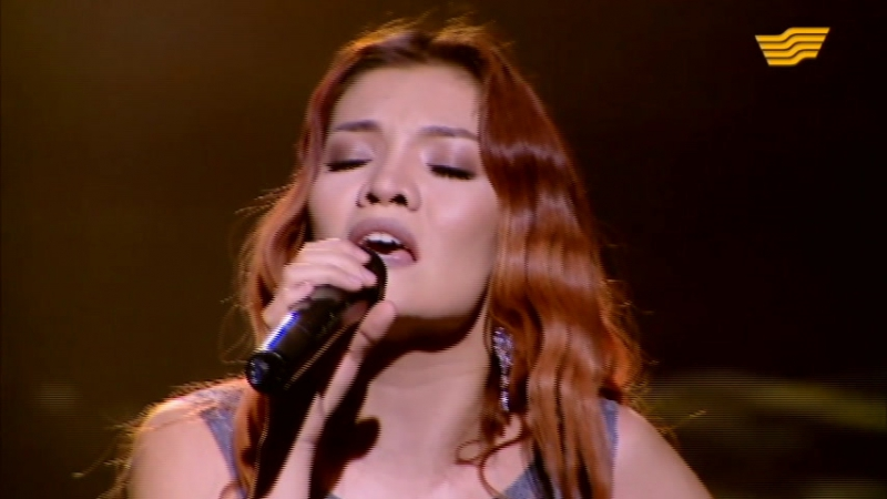 AIBOO «Отаным - қорғаным» концерті