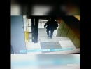 Клиент украл смартфон у персонала бара Приют Бодливой козы, 20.05.2017