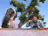 красивая песня - виру из индийского фильма - месть и закон