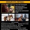 Конный клуб «Легенда» Санкт-Петербург
