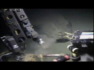 Discovery Погружение на дно Океана - Discovery Dive To The Bottom Of The World (2010)