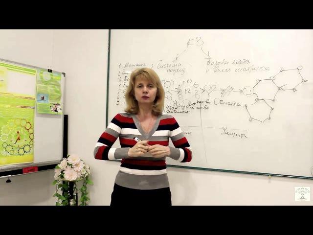 Основы здоровья Концепция здоровья Ч 1 Анна Середа Аврора