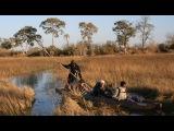 Мир Приключений - Дельта реки Окаванго. Ботсвана. Okavango Delta. Botswana.