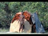 Мир Приключений - Затерянные африканские поселения. Сафари на джипах 4х4. Намибия...