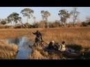 Мир Приключений Дельта реки Окаванго Ботсвана Okavango Delta Botswana