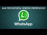 Как прочитать чужую переписку  WhatsApp Секреты